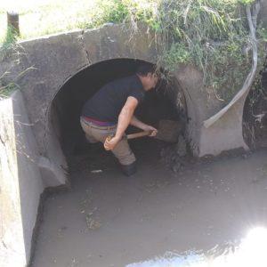 El gobierno continúa impulsando tareas de limpieza como medio de prevención al impacto de las lluvias.