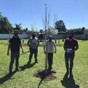 Forestación en espacios públicos del barrio Santa Rosa