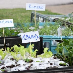 El gobierno municipal potencia el trabajo de los productores locales