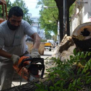 Las cuadrillas municipales aceleran tareas de desmalezado y limpieza en los barrios