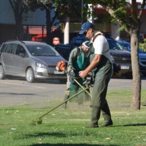 El Gobierno municipal refuerza servicios para tener una ciudad más limpia y ordenada