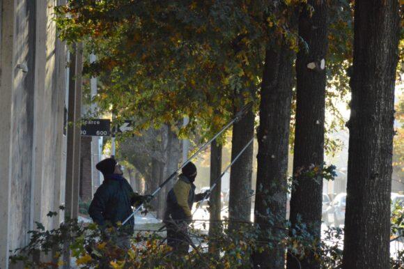 El Municipio y sus cuadrillas intensifican el mantenimiento de los espacios públicos