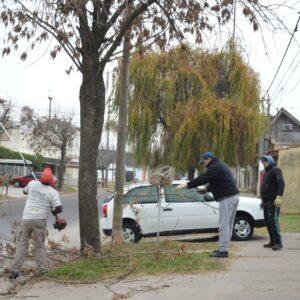 Desmalezado y poda: los espacios públicos, centro de atención para el Gobierno Municipal