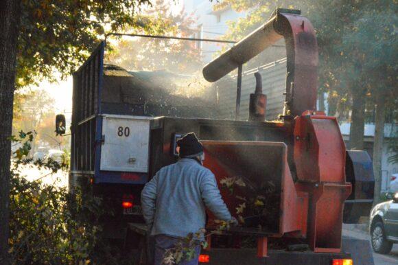 Se intensifican los trabajos de poda en distintos barrios de la ciudad
