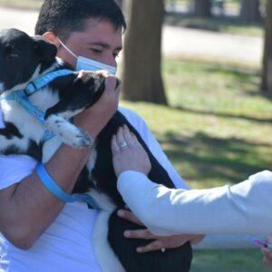 """El programa """"Orejas Verdes"""" llevó sus servicios de salud animal al barrio San Vicente"""